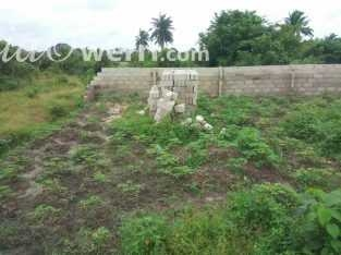 A plot of land for sale in Omagwa,PH